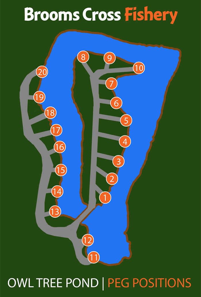Peg Positions - Owl Tree Lake